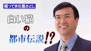[帰ってきた島さとし(嶋聡) ](ダイジェスト) ネコのポスターをどう思いますか?TORIDE Red TV