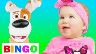 Bingo Song   동요와 아이 노래   어린이 교육