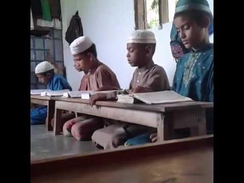 তা'লীমুল কোরআন মাদ্রাসা মাধবপুর নোয়াগাঁও কমলগঞ্জ মৌলভীবাজার