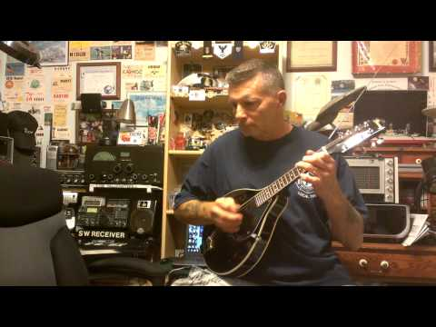 Ibanez mandolin
