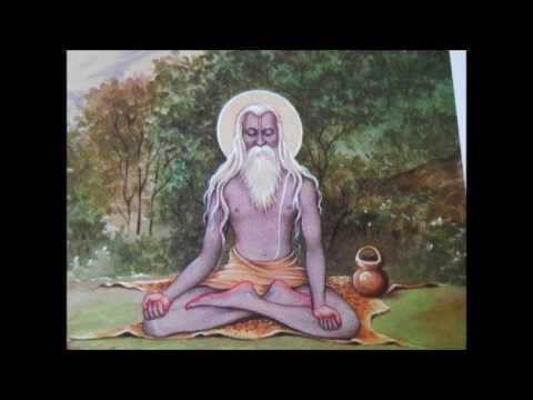 Brahmanand Bhajan:Hari bhajan bina sukh nahi re:S.S. Ratnu