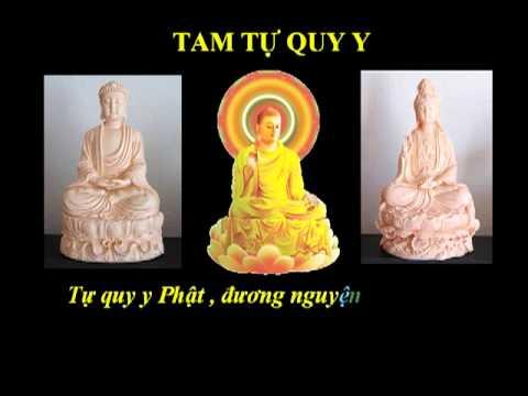 (14/14) Tụng Kinh A Di Đà-Hồi Hướng-(Âm)-Thầy Thích Trí Thoát tụng