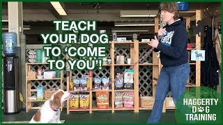Teach Your Dog to 'COME TO YOU'!