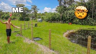 my-new-backyard-enclosures