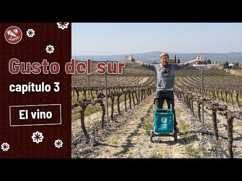 Gusto del sur: el vino   Capítulo 3