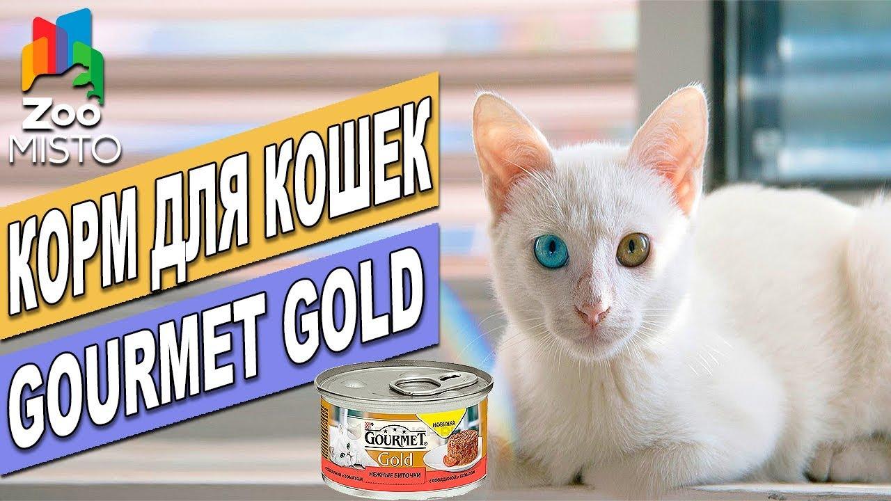 Купить сухой корм мяуⵑ для кошек и котят в интернет-магазине pets like бесплатная доставка по украине. Звоните и заказывайте!. ☎ (067) 353 06 00.