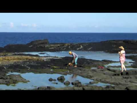 BLOW HOLES IN SAVAII ISLAND - SAMOA
