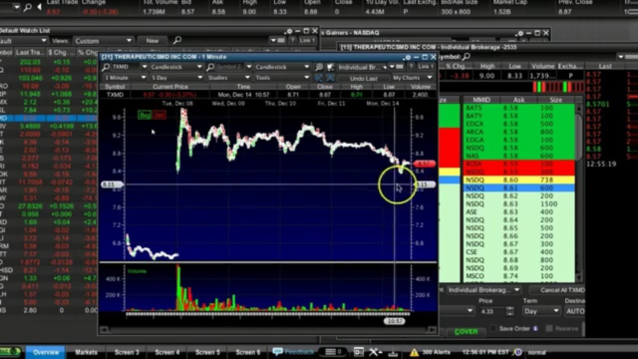 Timothy sykes penny stock strategy