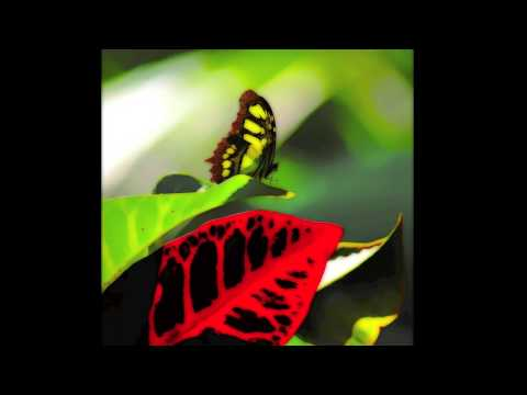 Raul Ramirez - Vinyl Fever