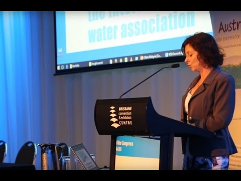 Queensland's water expertise highlighted at World Water Congress