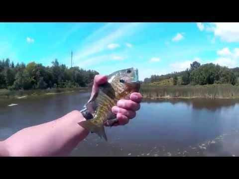 Fishing The Holland River  - Canal Road