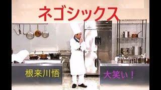 よしもとクリエイティブ・エージェンシーの芸人さん 根来川悟 出身地 島...