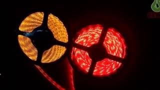 christmas decoration led flexible strips light 300 leds 5m good quality 3528 5050 smd rgb 12v