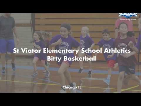 St Viator Elementary School Athletics 2018
