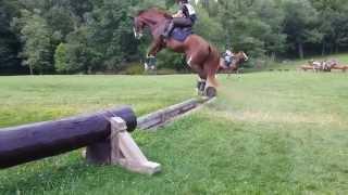 Героический прыжок лошади