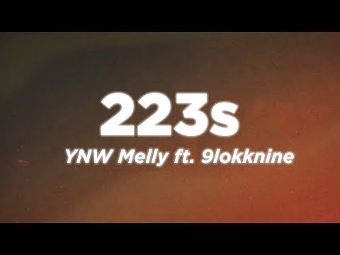 Ynw Melly 223s Lyrics Video Ft. 9lokknine