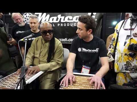 With Mr Stevie Wonder on harpejji at NAMM 2017