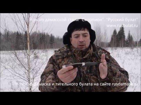 +18 Разделка лося ножом Скорпион Обзор Компания Русский булат Охота  Купить нож Дамаск Русские ножи