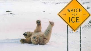 Slipping on ICE can lead to Traumatic Brain Injury or Concussion!