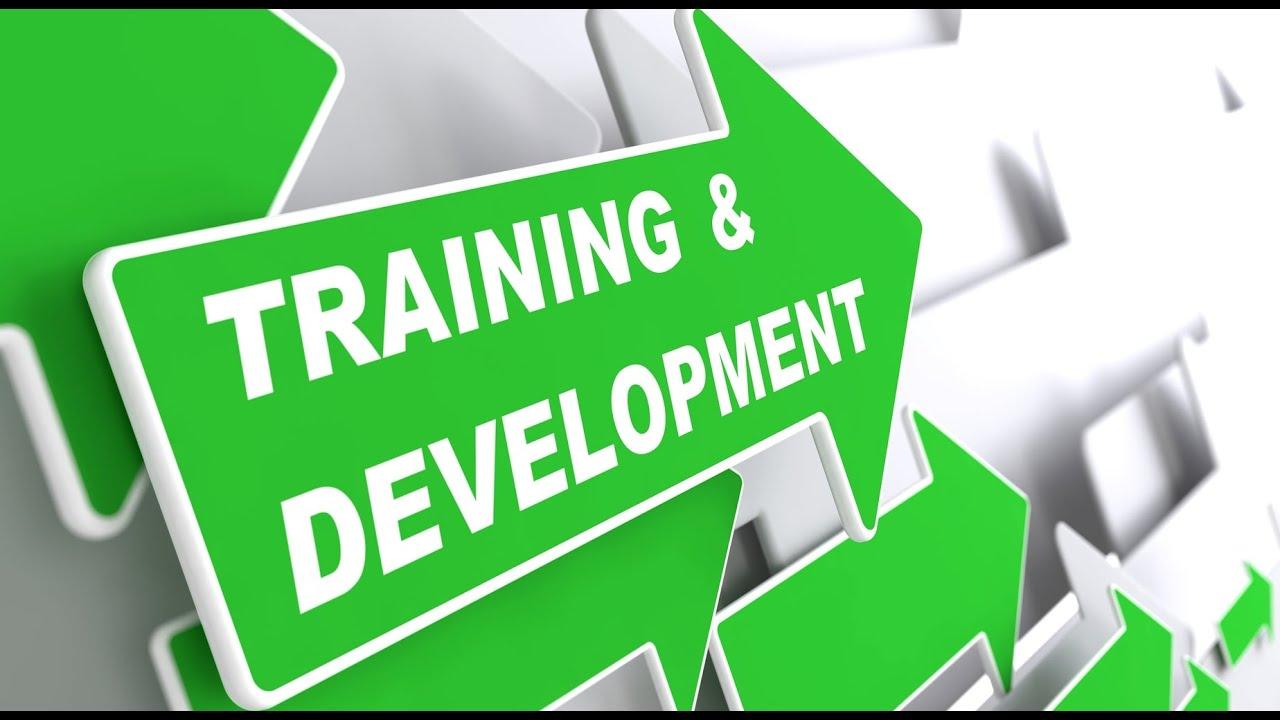 Human resources and training at panasonic