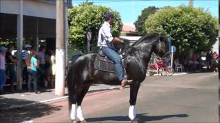 Taboadão Cavalgada 2014