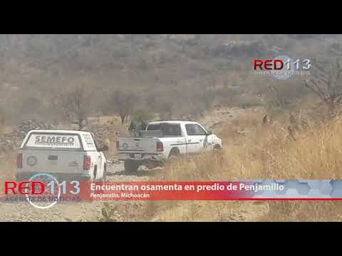 VIDEO Encuentran osamenta en predio de Penjamillo