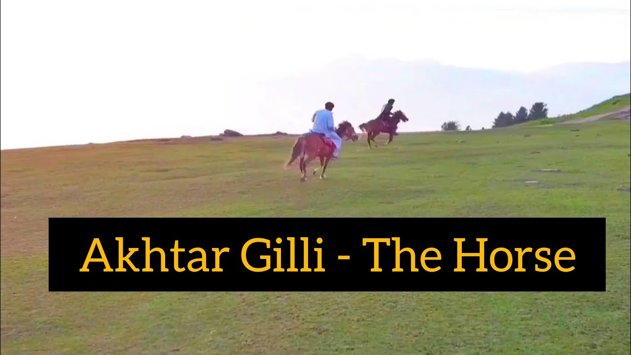 Living the Dreams, Ep. 02 - Akhtar Gilli, The Horse