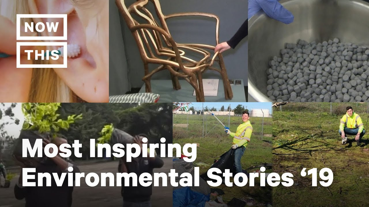Most Inspiring Environmental Stories of 2019 | NowThis