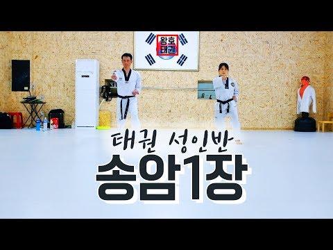 [천안왕호체육관]태권도성인반/송암1장/품새수련