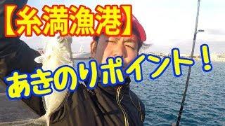 【釣り】糸満漁港あきのりポイント!