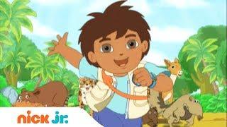 Go, Diego, Go | Música de abertura 🎤 | Nick Jr.