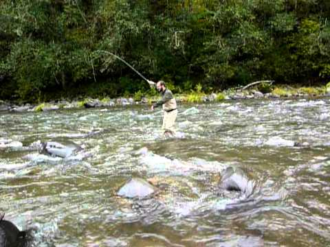 Sandy river coho salmon caught fly fishing youtube for Sandy river fishing report