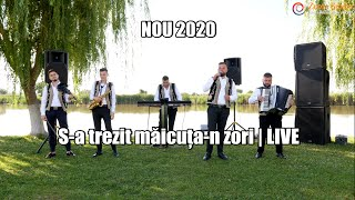 Descarca NOU 2020 S-A TREZIT MAICUTA-N ZORI - FORMATIA IULIAN DE LA VRANCEA LIVE