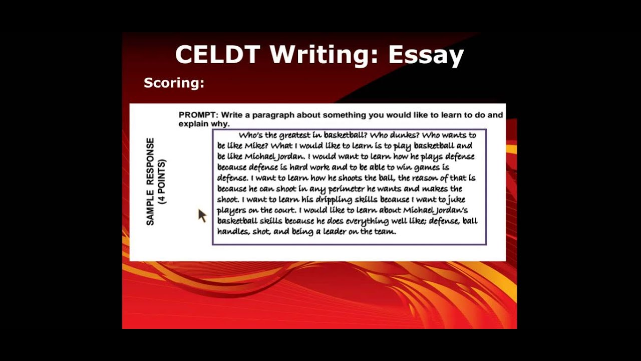 practise essay writing