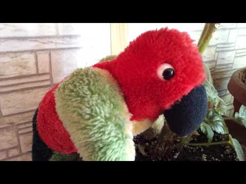 Vintage music playing stuffed parrot from Heunec Exclusive