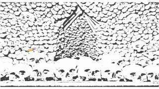 Auto Draw 2: Bones Of Ossuary Chapel, Sedlec, Czech Republic