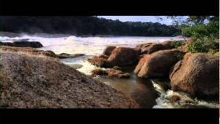 Amazonas Colombia: El viaje de tu vida