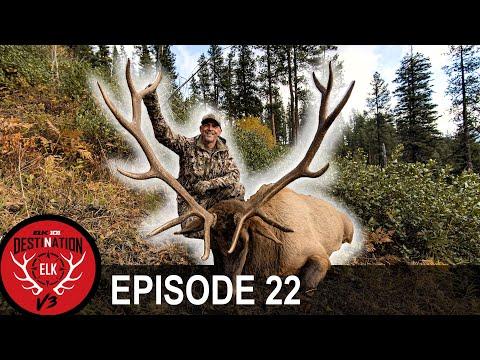 GIANT Backcountry Elk! (Destination Elk V3 – Episode 22)