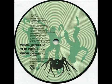 LeShaun - The Drill (Tommy Boy 1993).wmv