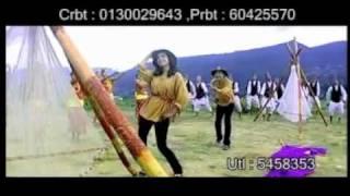 Lalu pate phool chhaina by Milan Lama