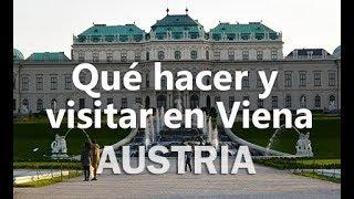 Qué hacer en Viena - Austria