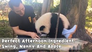 Perfect Afternoon Ingredient: Swing, Nanny And Apple | iPanda