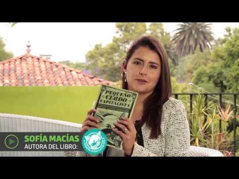 Cómo comenzar tu vida financiera por Sofía Macias   UTEL Universidad