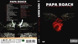 Papa Roach - Live & Murderous in Chicago (2005) [DVD] (HD)