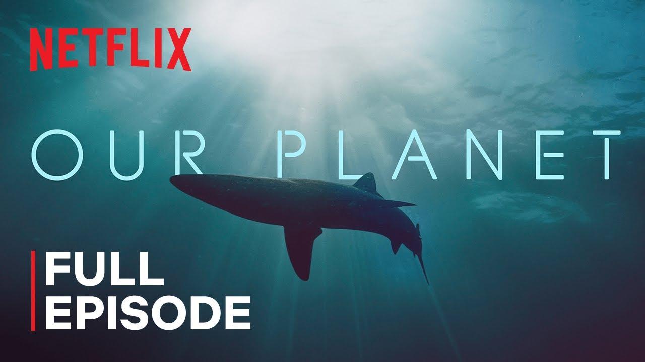 Download Our Planet | Coastal Seas | FULL EPISODE | Netflix