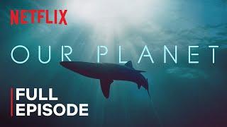 Download Our Planet   Coastal Seas   FULL EPISODE   Netflix