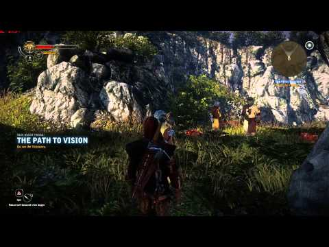 Witcher 2 - Where to find the Arbitrator.