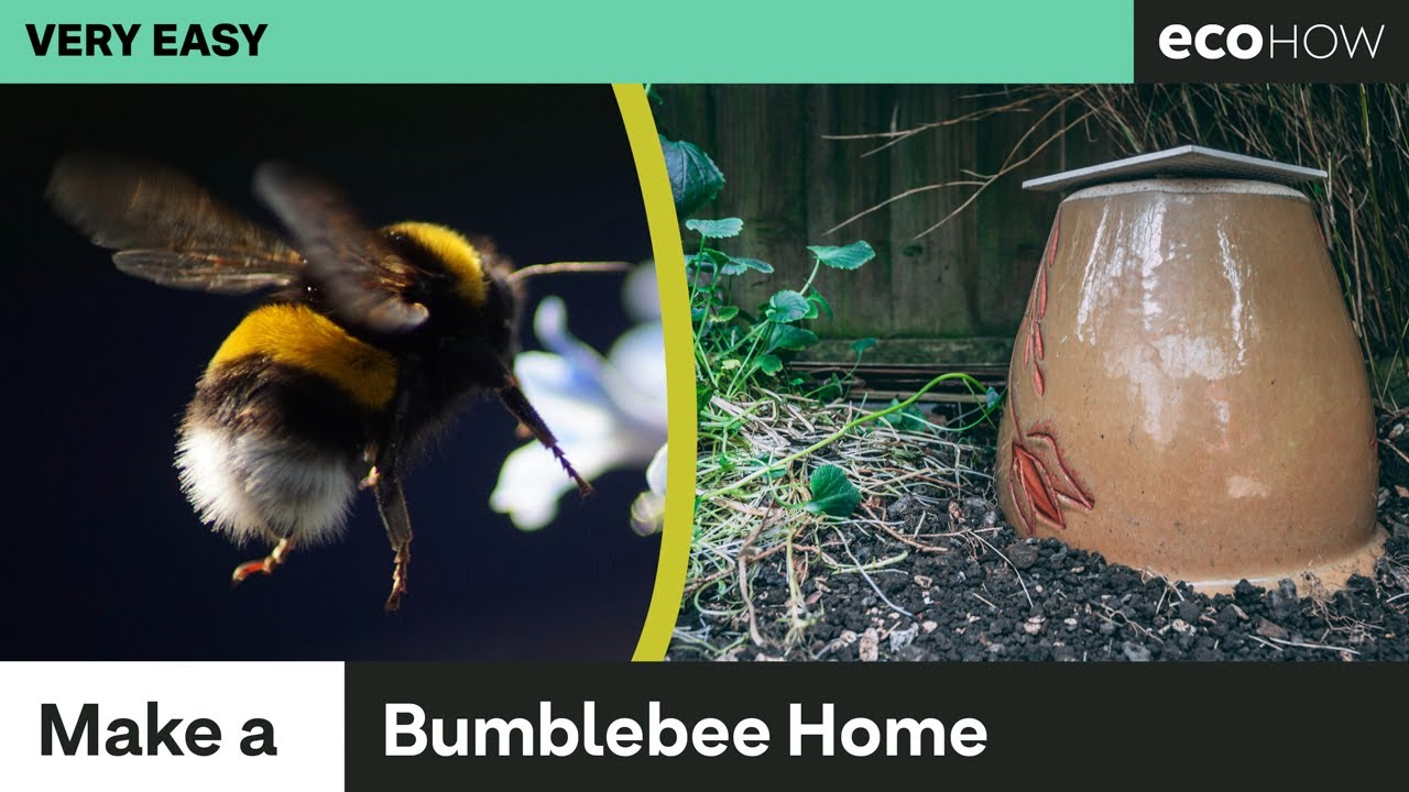 How to make a Bumblebee Home