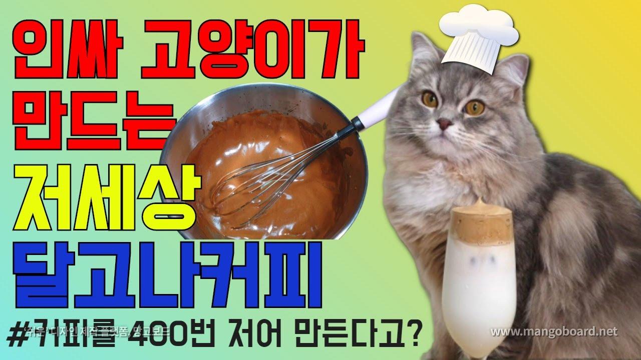 인싸 고양이가 만드는 저세상 달고나커피! 과연 그 맛은?? (통냥통냥 통후추)