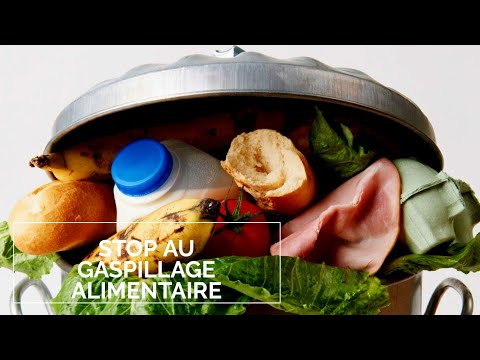 [Reportage]   Stop Au Gaspillage Alimentaire - Ep04 - YouTube